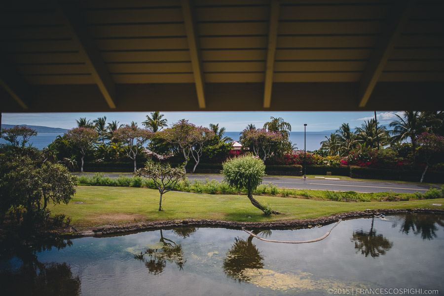 wedding photographer hawaii maui 1046