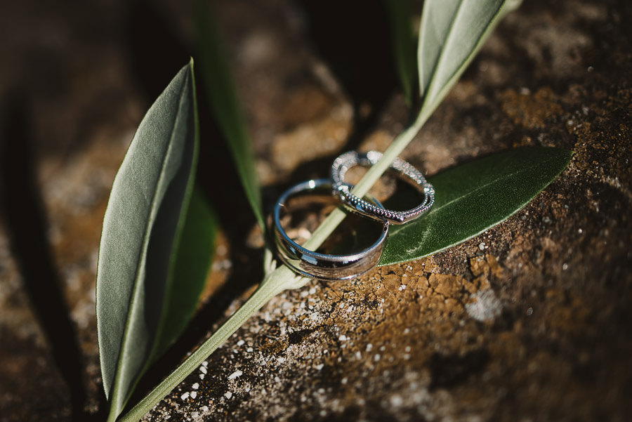 rustic chic rings shot with olive tree